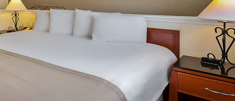 Chase Suite Hotel Tampa Studio King Suite